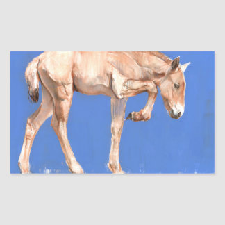 Przewalski Foal 2012 Rectangular Sticker