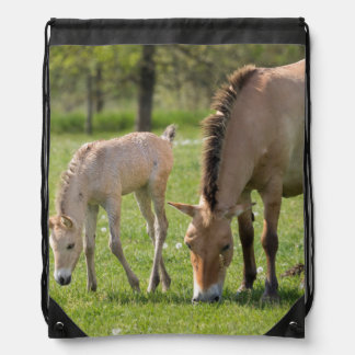 Przewalski's Horse and foal grazing Drawstring Bag