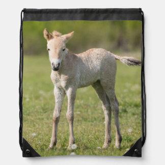 Przewalski's Horse foal, Hungary Drawstring Bag