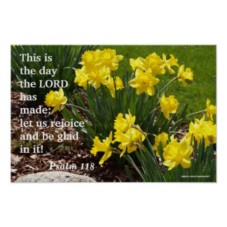 Psalm 118 Daffodil Poster