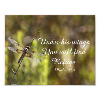 Psalm 91:4 With dragonfly Art Photo