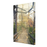 Psalm 91 Forest Photo Christian Bible Verse Wall