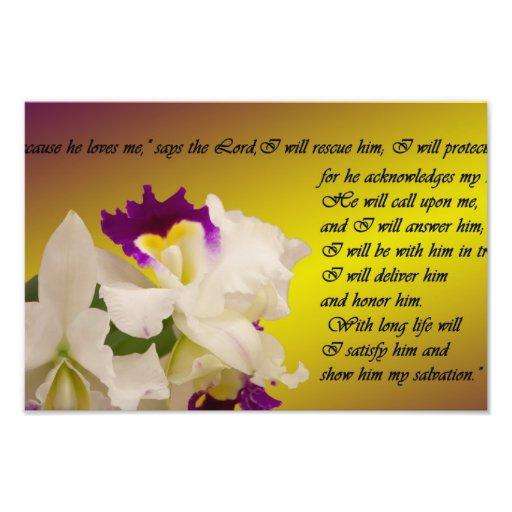 Psalm 91 photo