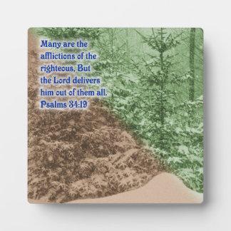 Psalms 34:19 plaque