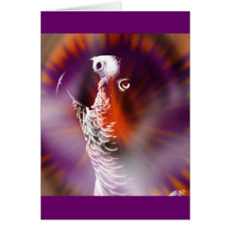 Psychedelic Grunge African Grey Parrot Card