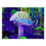 psychedelic mushroom poster