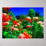 Psychedelic Rose Garden Poster