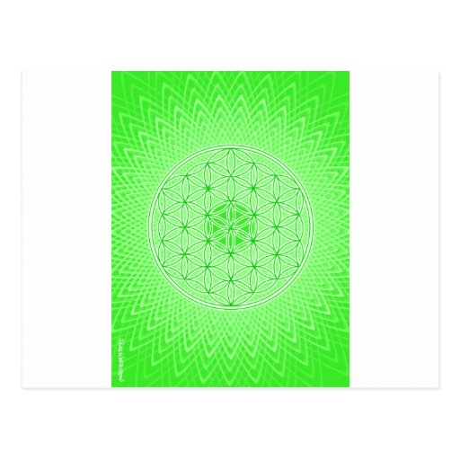 Psychedelic Sacred Geometry Heart Chakra Design Post Card