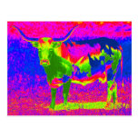 Psychedelic Texas Longhorn Cow