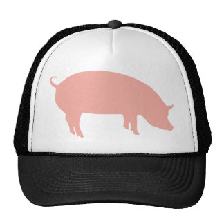 Psychic Pig Euro 2012 Hats