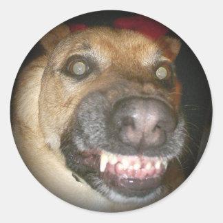 Psycho Dog Fade to Black Round Stickers