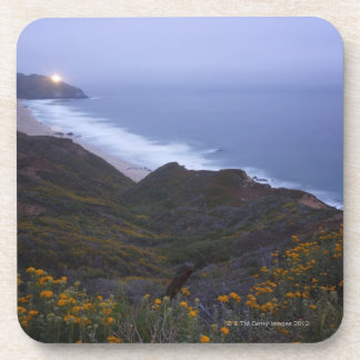 Pt. Sur Lightstation and flowering chapparal, Coasters