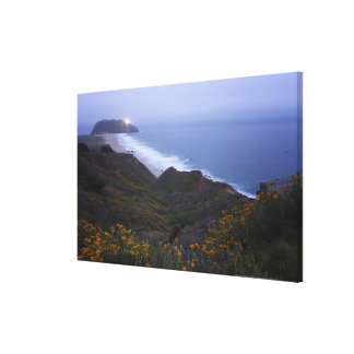 Pt. Sur Lightstation and flowering chapparal, Gallery Wrap Canvas