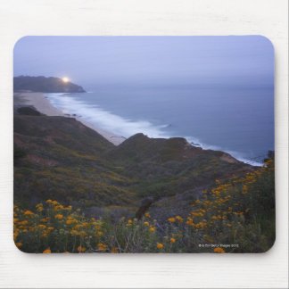 Pt. Sur Lightstation and flowering chapparal, Mouse Pad