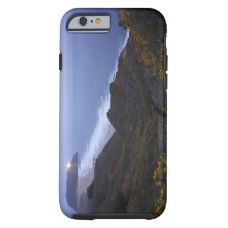 Pt. Sur Lightstation and flowering chapparal, Tough iPhone 6 Case