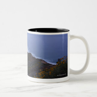 Pt. Sur Lightstation and flowering chapparal, Two-Tone Coffee Mug