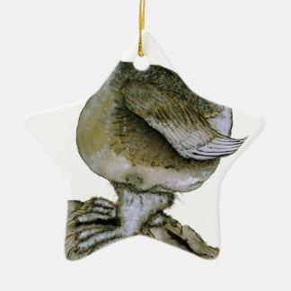 Ptarmigan bird, tony fernandes ceramic star decoration