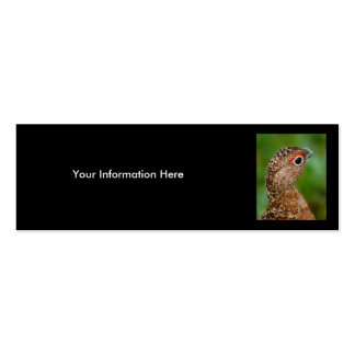 ptarmigan Double-Sided mini business cards (Pack of 20)