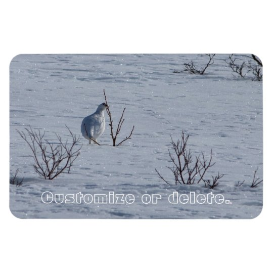 Ptarmigan Snacking; Customisable Rectangular Photo Magnet