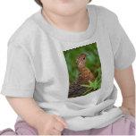ptarmigan t-shirts
