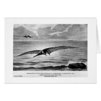 Pteranodon art card