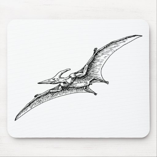 Pterodactyl Mouse Pads