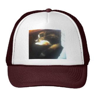 Pub Cat Trucker Hat