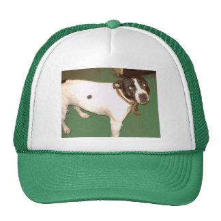 Pub Dog Trucker Hats