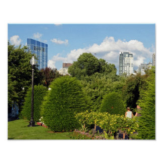 Public Garden and Skyscrapers Downtown Boston Poster