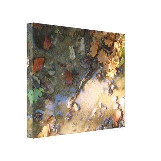 Puddle Gallery Wrap Canvas