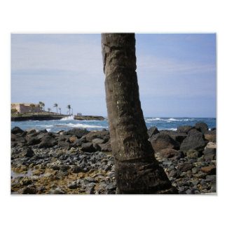 Puerto Rico Beach by RZB Poster