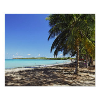 Puerto Rico, Fajardo, Culebra Island, Seven Seas Poster