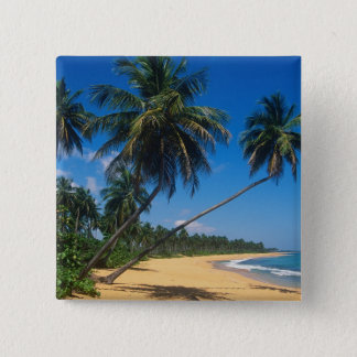 Puerto Rico, Isla Verde, palm trees. 15 Cm Square Badge