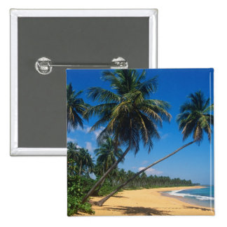 Puerto Rico, Isla Verde, palm trees. 15 Cm Square Badge