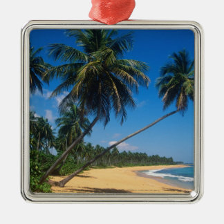 Puerto Rico, Isla Verde, palm trees. Christmas Ornament