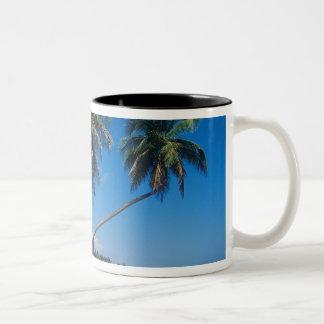 Puerto Rico, Isla Verde, palm trees. Two-Tone Coffee Mug