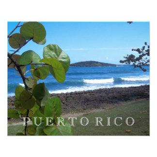 Puerto Rico Ocean View 11.5 Cm X 14 Cm Flyer