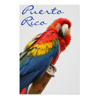 Puerto Rico Scarlet Macaw Poster