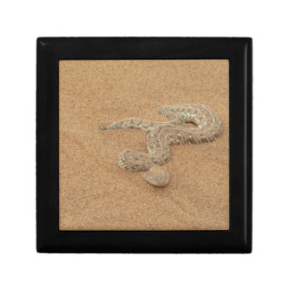 Puff Adder snake Small Square Gift Box
