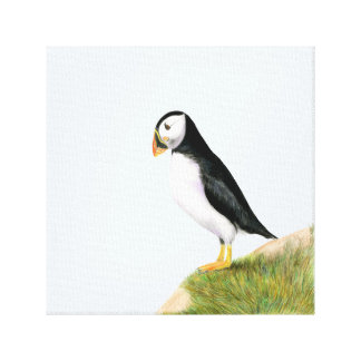 Puffin Bird Watercolour Painting Artwork Print