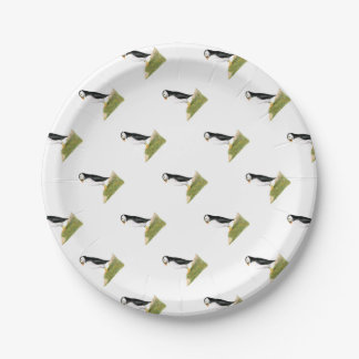 Puffin Bird Watercolour Painting Print fratercula 7 Inch Paper Plate