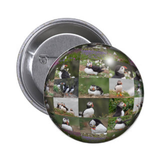 Puffin Collage 6 Cm Round Badge