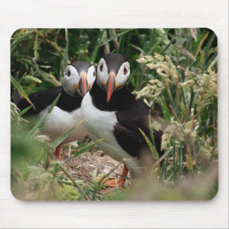 Puffin Couple Mouse Mat