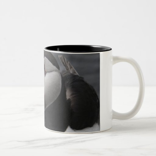 Puffin Head Mugs