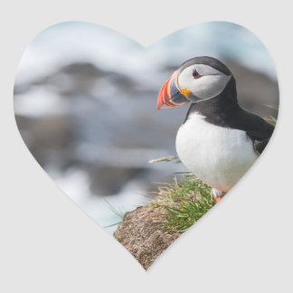 Puffin Heart Sticker