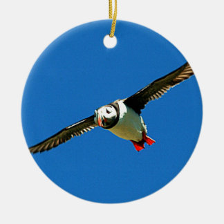 Puffin in flight skellig Islands Ireland Christmas Ornament