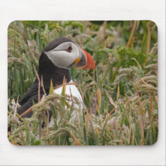 Puffin in Grass Mouse Mat