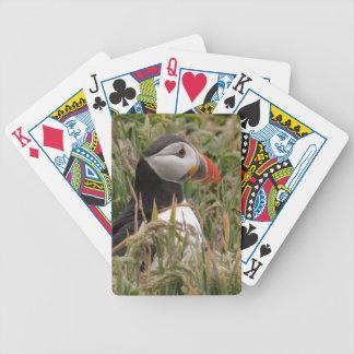 Puffin in the Grass Card Decks