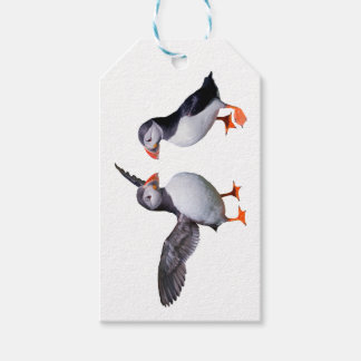 Puffin Pals Gift Tags (choose colour)
