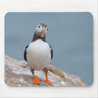 Puffin Pose Mouse Mat